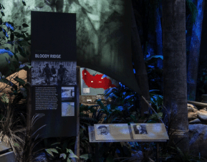 """Guadalcanal: Green Hell"" gallery in the Road to Tokyo exhibit. Immersive displays include maps and personal stories to help visitors understand what troops faced during the fighting. Photo courtesy of The National WWII Museum"