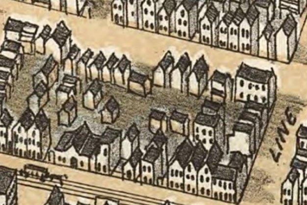 "A 19th century ""Bird's Eye View"" map of Charleston, South Carolina."